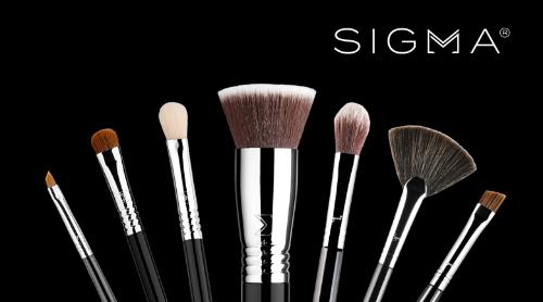 美妆界爆款化妆刷SIGMA